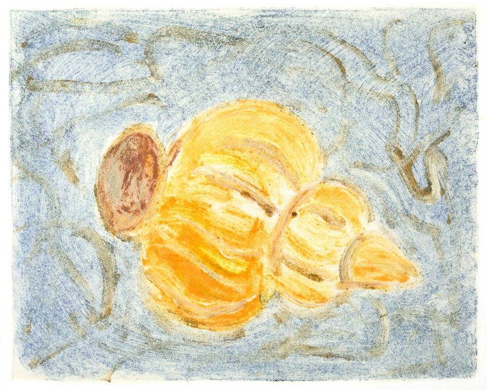 Ghost Print of Seashell